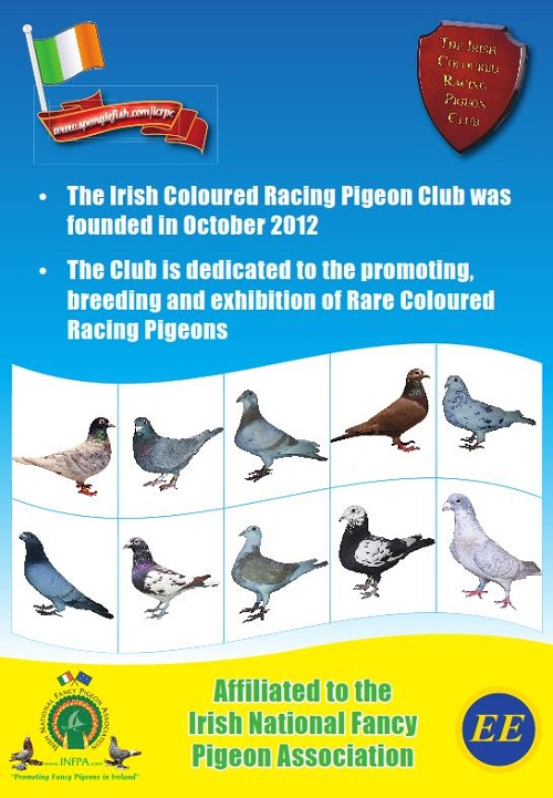 The Irish Coloured Racing Pigeon Club