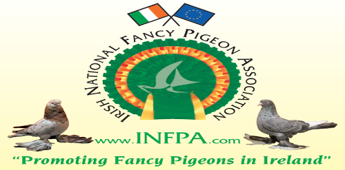 The Irish National Fancy Pigeon Association